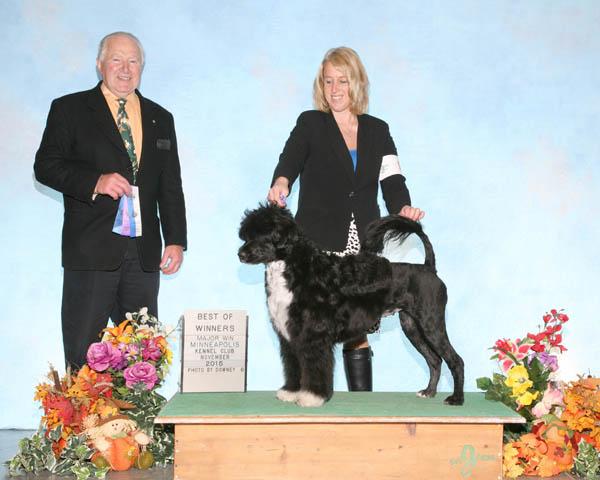 Violet Major Win 112215 Judge Dr. Carmen Battaglia